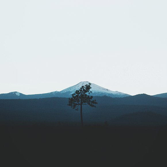 Jace Goodwin photography lone tree